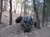 Carnage with new Buggy! -